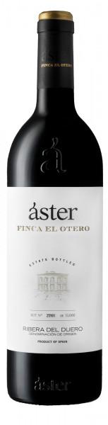 Áster Finca El Otero
