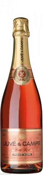6 x Juve y Camps Cava Brut Rosé Pinot Noir