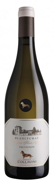 Collavini Blancfumat Sauvignon (Collezione Privata i Poderi)